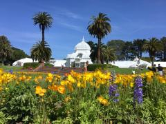 Photo : Conservatory Of Flower dans le Golden Gate Park