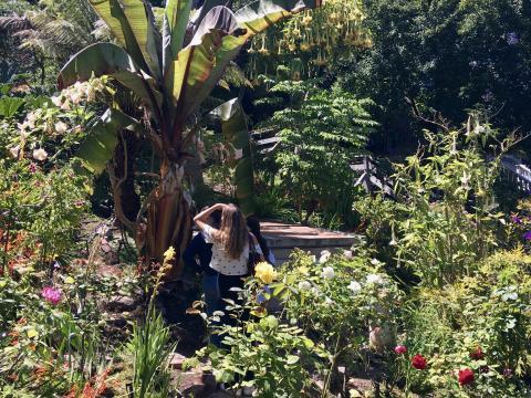 Jardin luxuriant sur Russian Hill San Francisco