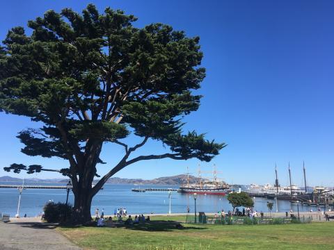 Aquatic Cove une plage un site historique et lieux de promenade à San Francisco