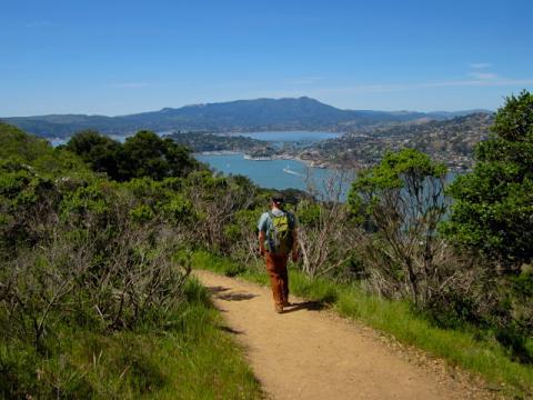 Photo : chemin de randonnée sur Angel Island