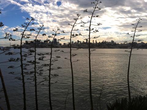Photo : vue sur la ville à l'aurore